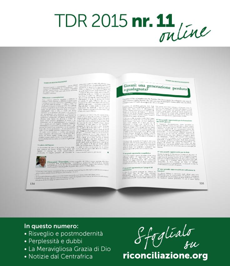TDR_online